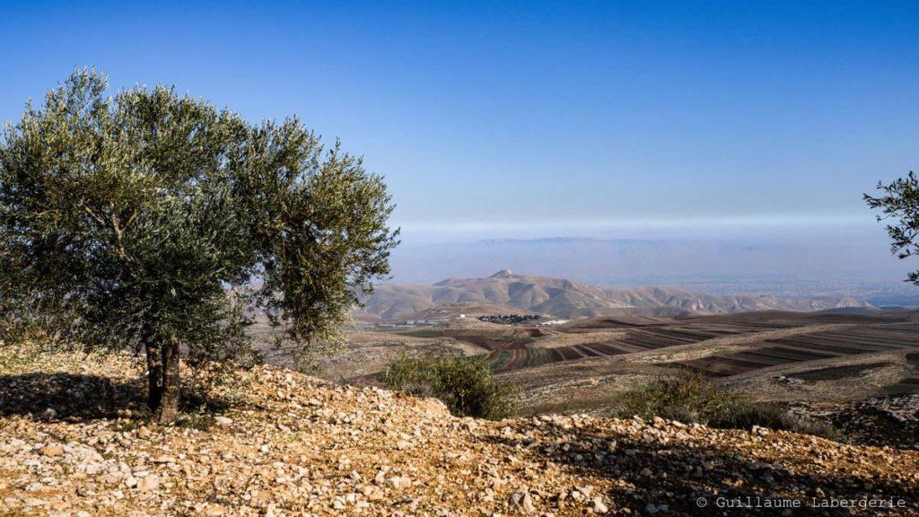 ruben gad demi tribu-manasse israel josue bible